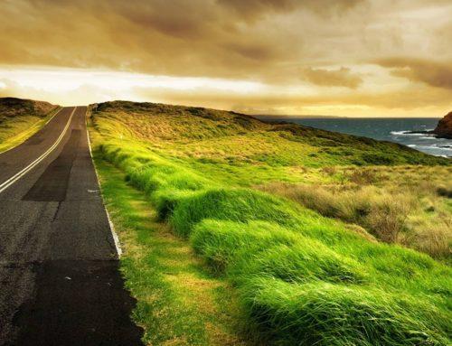"""La strada che guarda avanti. Col progetto """"Next Start"""" riparte la programmazione della Fondazione Molise Cultura"""